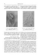 Stranica 10