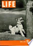 5 tra 1937